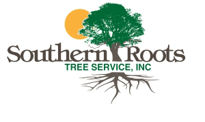 all-points-tree-service Logo